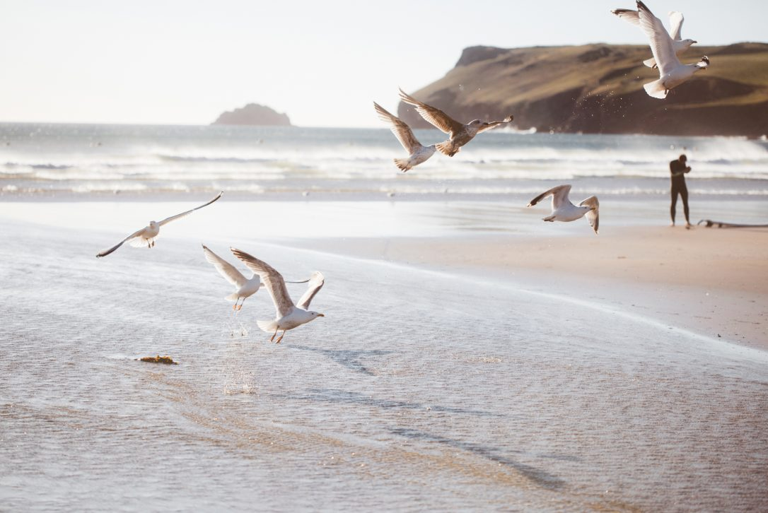 Polzeath beach, North Cornwall