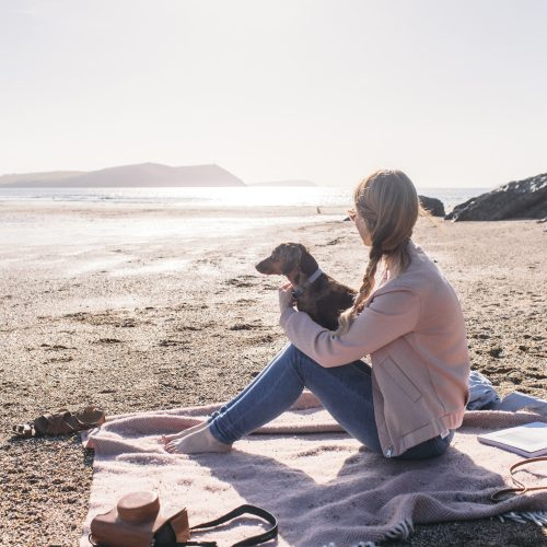 If you are heading to the wilds of the North Cornish coast with your four-legged friend in tow, be inspired with our itinerary for dog owners.