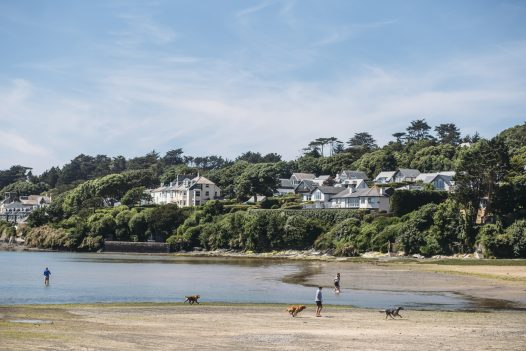 Your dog will love splashing in the water at Porthilly in Rock