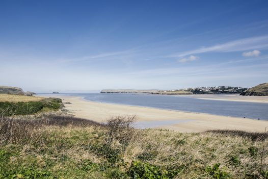 Dog-friendly beaches in Padstow