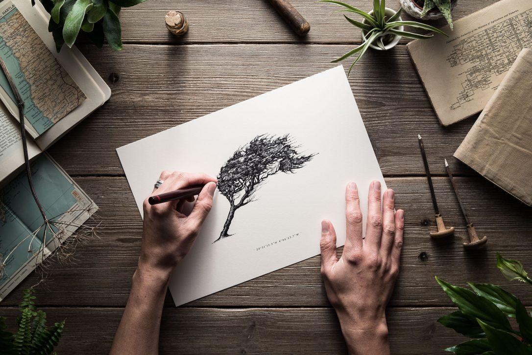 Nicole Heidaripour, North Cornwall based illustrator