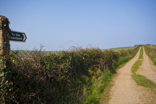 Cribba near Port Isaac is perfect for a walking holiday as it backs onto miles of scenic footpaths