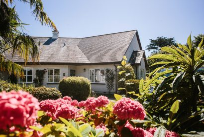 1 Menague, a self-catering holiday cottage in Rock, North Cornwall