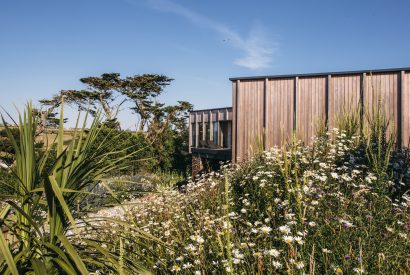 Exterior and garden at Dry Creek House, a self-catering holiday home in Polzeath, North Cornwall
