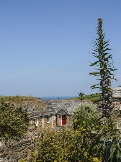 Sea views from The Linhaye, a self-catering holiday home near Port Isaac, North Cornwall